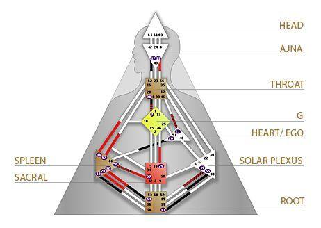 Design Humain design humain : les centres d'énergie   le tarot de léo